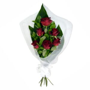 Red Roses In Deco Net